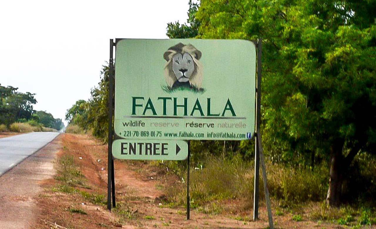 Reserve fathala1