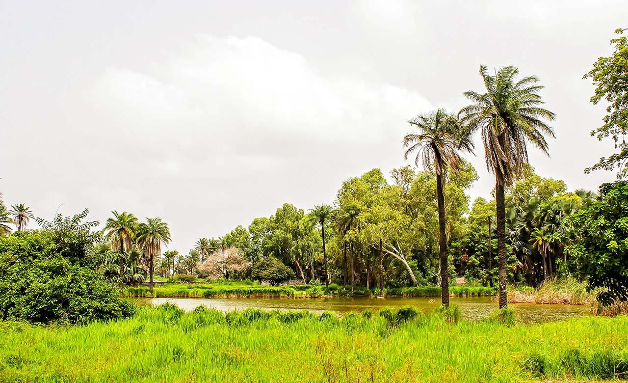 Climat-tropical